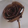 ורד ברזל